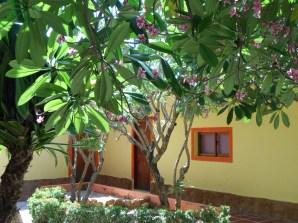 Actualizadas Villa Botanica 016