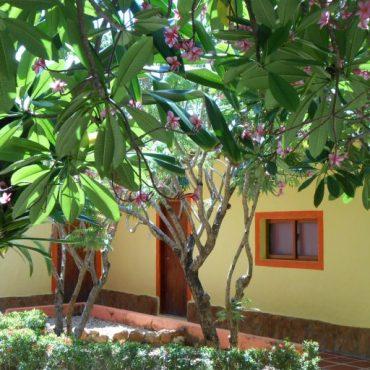 cropped-actualizadas-villa-botanica-016.jpg